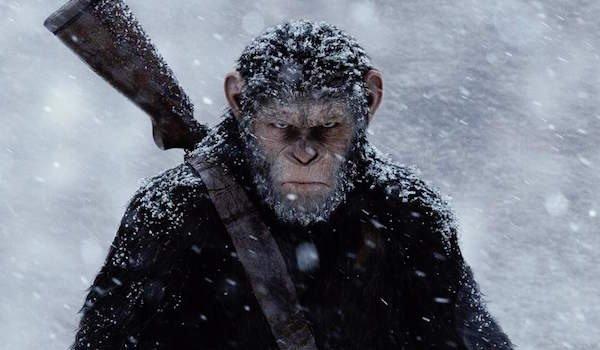 نمایی از فیلم سیاره میمون ها